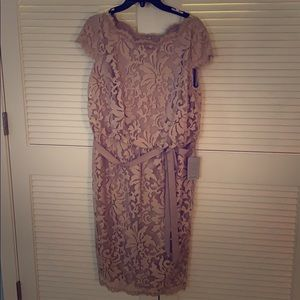 NWT Lace Knee Length Dress